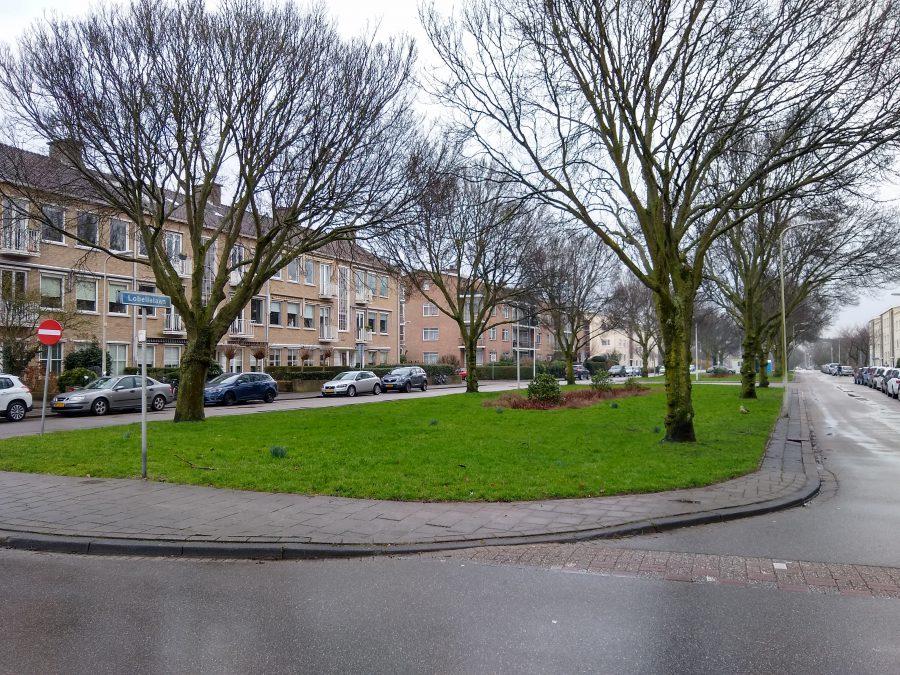 BK ingenieurs, Bohemen-Noord, Den Haag, rioolsysteem, vervangen riolering, verharding